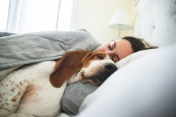 Woman with dog, suffering from negative relationship between pets and sleep apnea